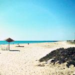 Beach party le 7 Août à Tazarka