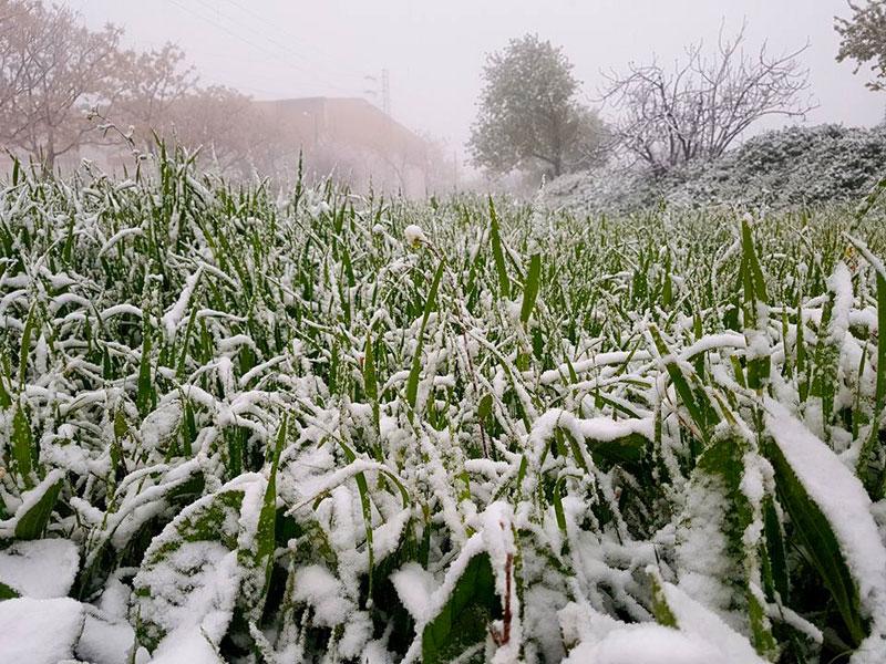 Ces photos de Thala sous la neige vont sûrement vous séduire