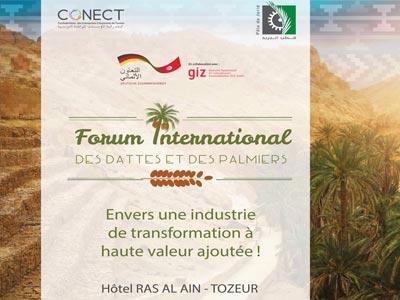 Forum International des dattes et des palmiers, en Septembre à Tozeur