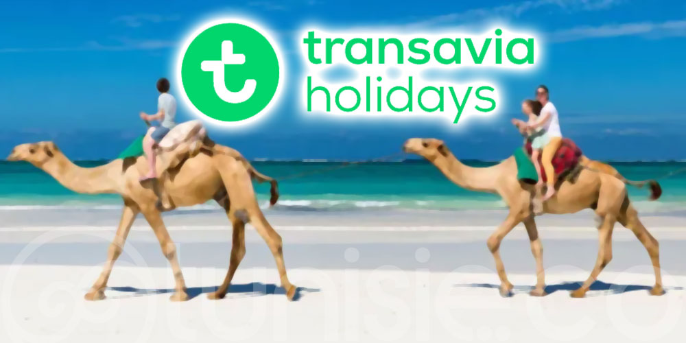 Transavia lance Transavia Holidays et Djerba au programme !