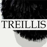 Treillis en Devenir : exposition collective  à partir du 1er mars à la galerie Le Cap