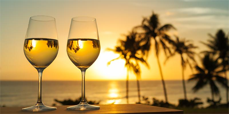 De Magon à nos jours : Le vin tunisien une longue histoire de saveurs