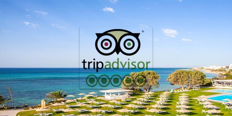 10 hôtels recommandés par Tripadvisor pour une escapade en famille à Hammamet