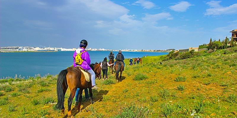 La randonnée équestre: Une nouvelle tendance des aventuriers tunisiens