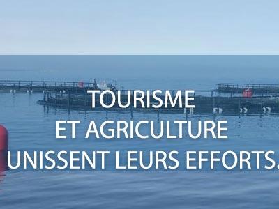 Les produits du terroir comme axe pour le Tourisme en Tunisie