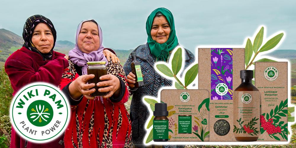 Les richesses des huiles essentielles et des produits issus des plantes aromatiques et médicinales disponibles en ligne