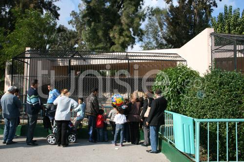 zoo-161111-21.jpg