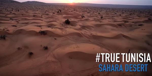 Au cœur du désert du Sud Tunisien