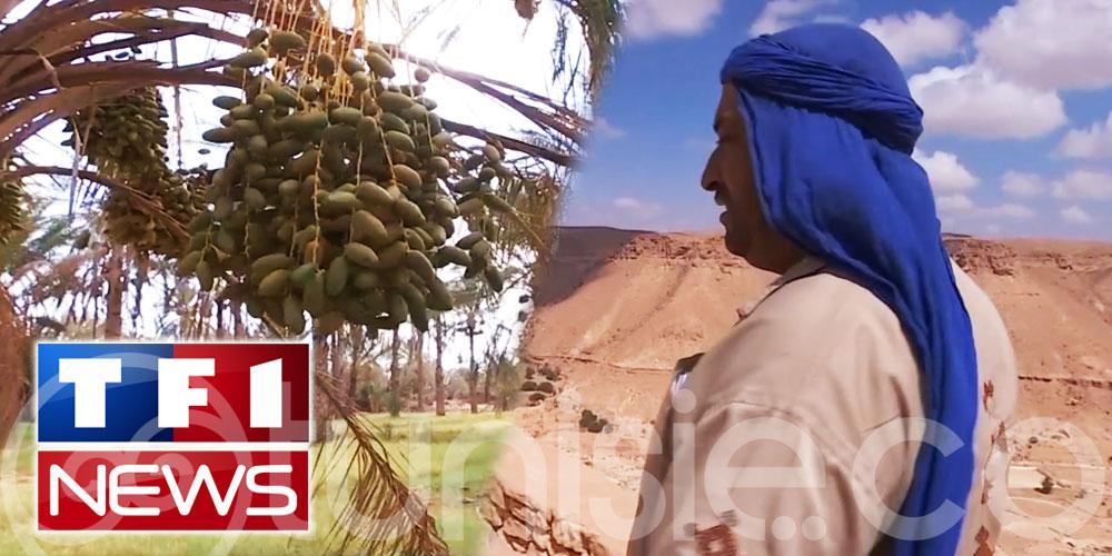 TF1 part à la rencontre des sentinelles du Sahara Tunisien